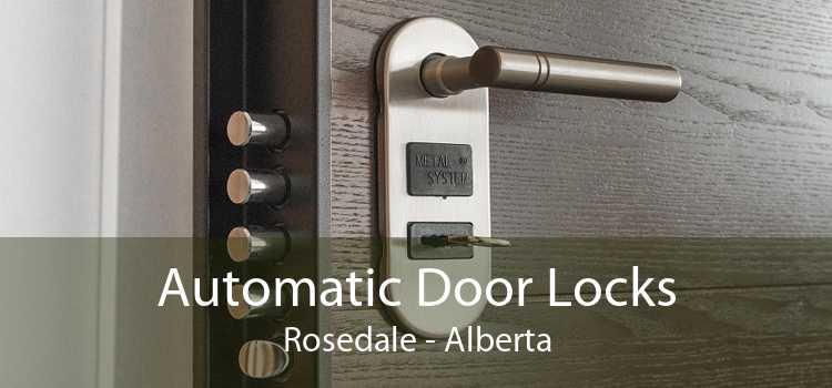 Automatic Door Locks Rosedale - Alberta