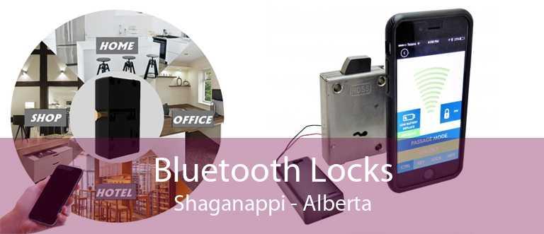 Bluetooth Locks Shaganappi - Alberta