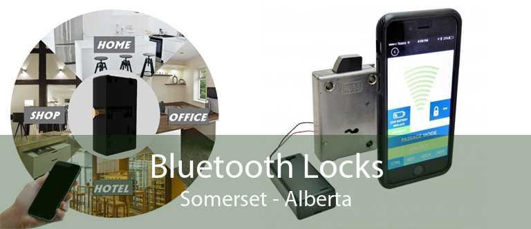 Bluetooth Locks Somerset - Alberta