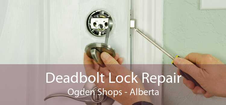 Deadbolt Lock Repair Ogden Shops - Alberta