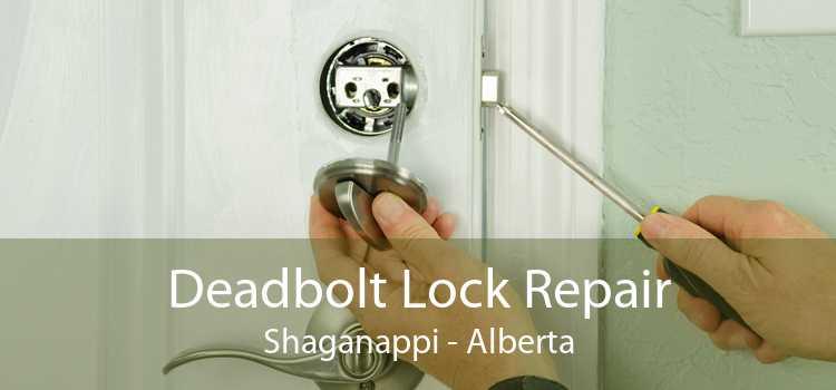 Deadbolt Lock Repair Shaganappi - Alberta