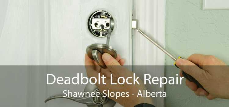Deadbolt Lock Repair Shawnee Slopes - Alberta