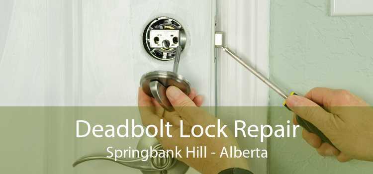 Deadbolt Lock Repair Springbank Hill - Alberta