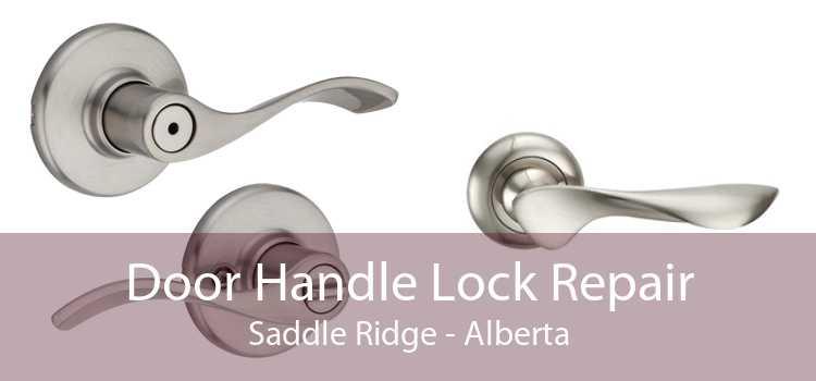 Door Handle Lock Repair Saddle Ridge - Alberta