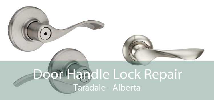 Door Handle Lock Repair Taradale - Alberta