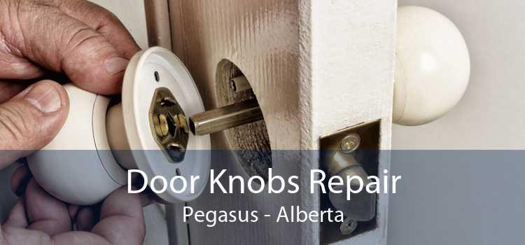 Door Knobs Repair Pegasus - Alberta