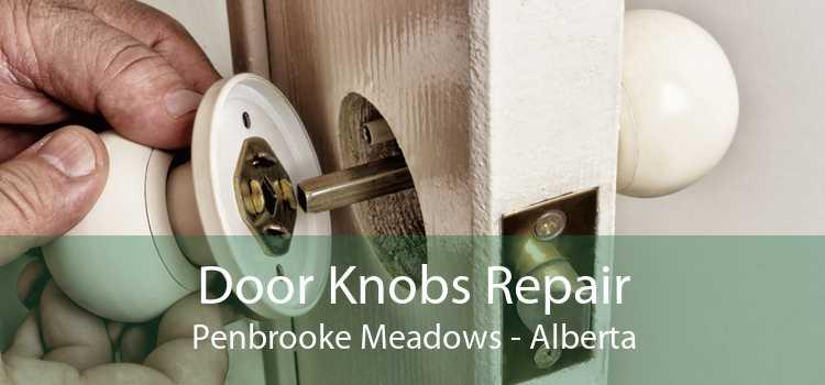 Door Knobs Repair Penbrooke Meadows - Alberta