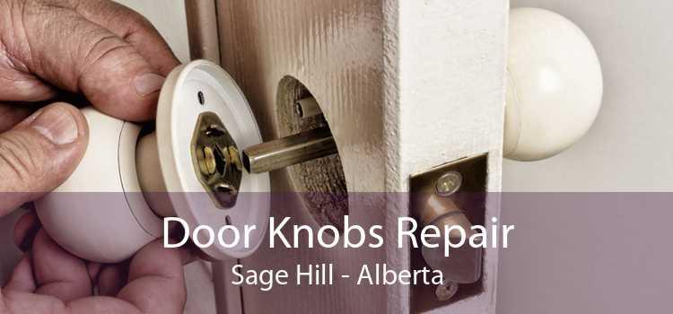 Door Knobs Repair Sage Hill - Alberta