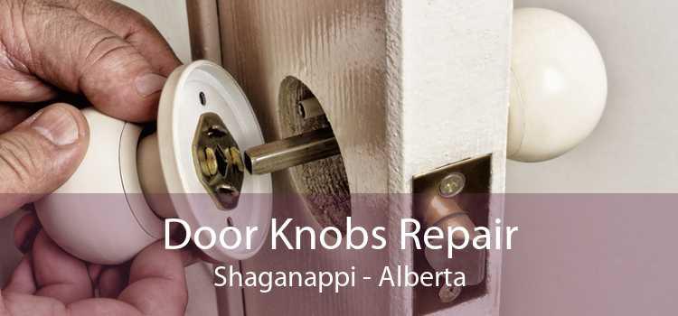 Door Knobs Repair Shaganappi - Alberta