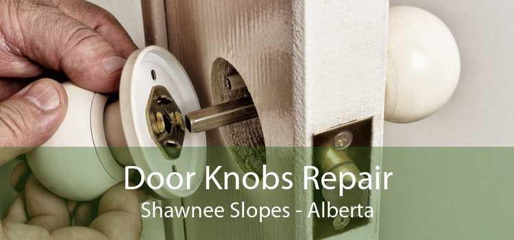 Door Knobs Repair Shawnee Slopes - Alberta