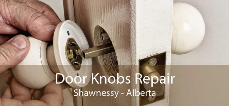 Door Knobs Repair Shawnessy - Alberta