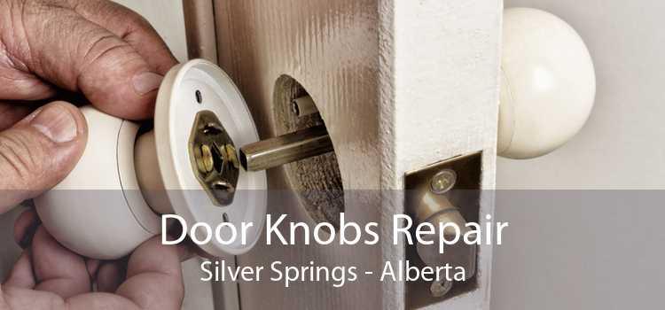 Door Knobs Repair Silver Springs - Alberta