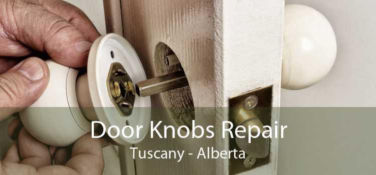 Door Knobs Repair Tuscany - Alberta