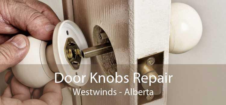 Door Knobs Repair Westwinds - Alberta