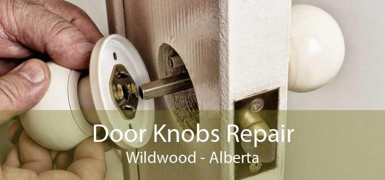 Door Knobs Repair Wildwood - Alberta