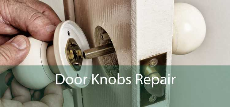 Door Knobs Repair