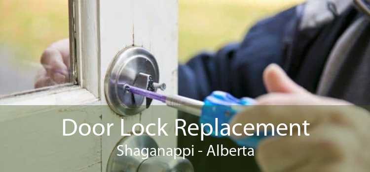 Door Lock Replacement Shaganappi - Alberta