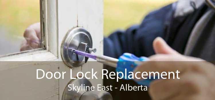 Door Lock Replacement Skyline East - Alberta