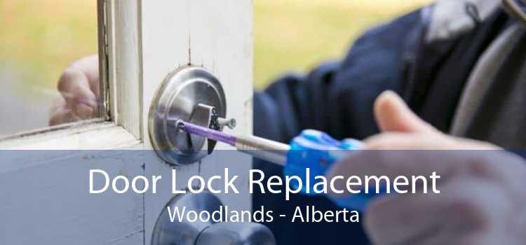 Door Lock Replacement Woodlands - Alberta