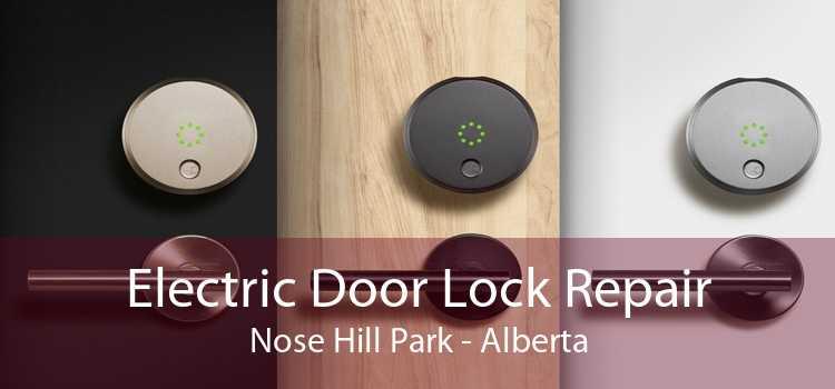 Electric Door Lock Repair Nose Hill Park - Alberta