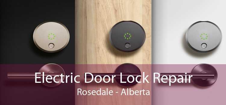 Electric Door Lock Repair Rosedale - Alberta