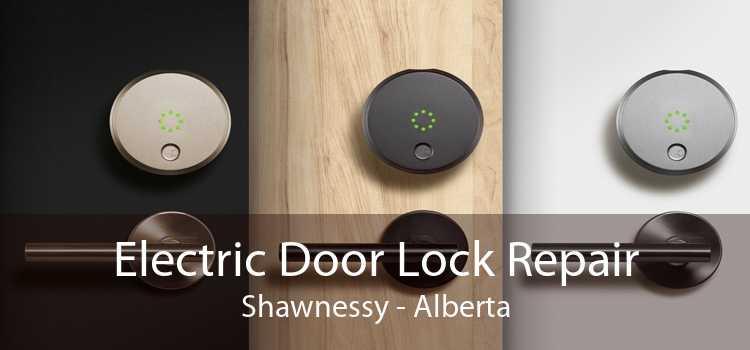 Electric Door Lock Repair Shawnessy - Alberta