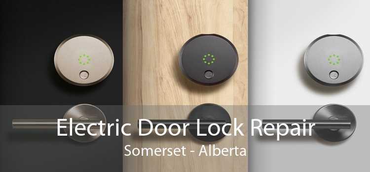 Electric Door Lock Repair Somerset - Alberta