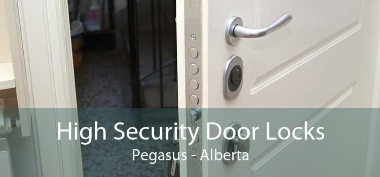 High Security Door Locks Pegasus - Alberta