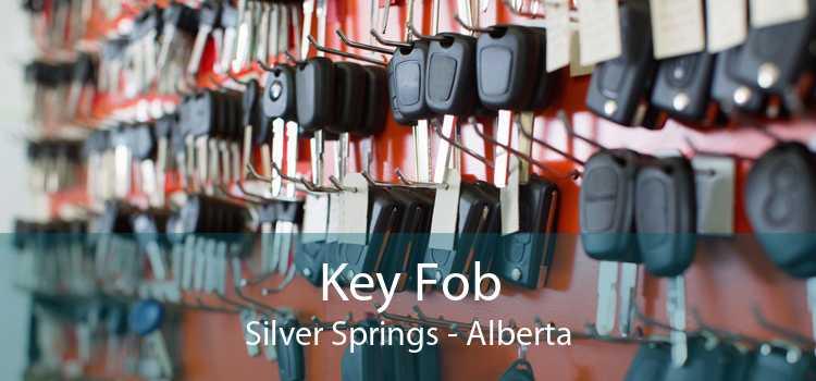 Key Fob Silver Springs - Alberta
