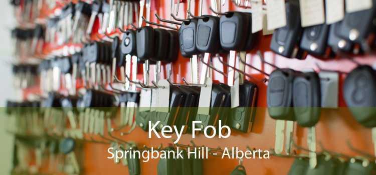 Key Fob Springbank Hill - Alberta