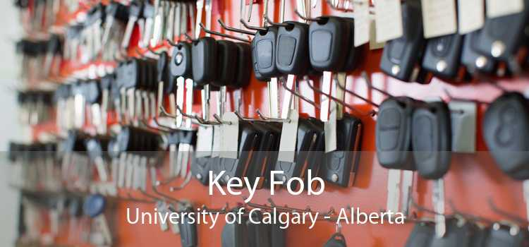 Key Fob University of Calgary - Alberta
