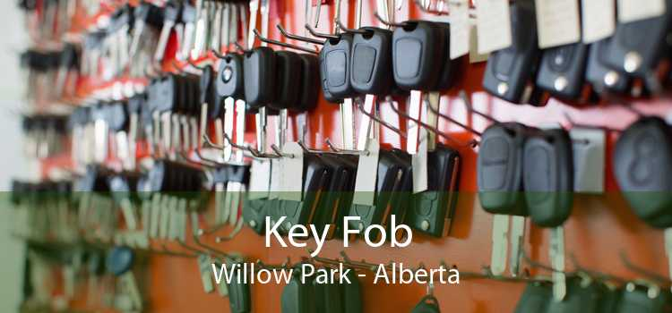Key Fob Willow Park - Alberta