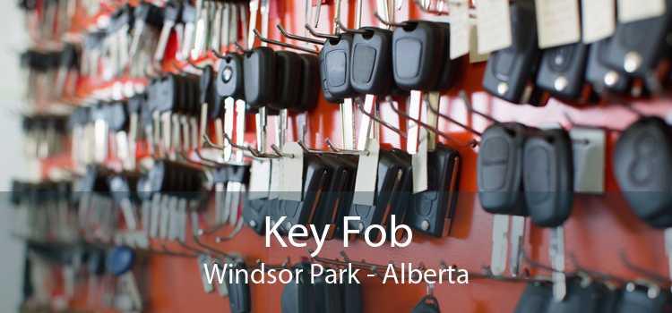 Key Fob Windsor Park - Alberta