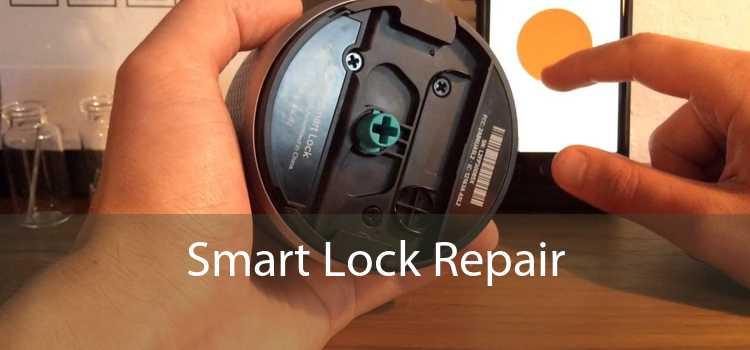 Smart Lock Repair